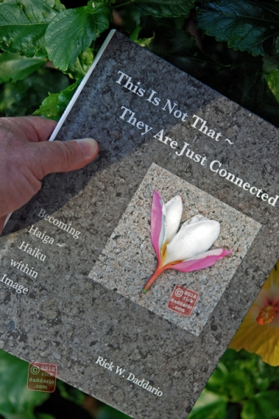 ©12 This Is Not That ~ They Are Just Connected; A Book of Haiga