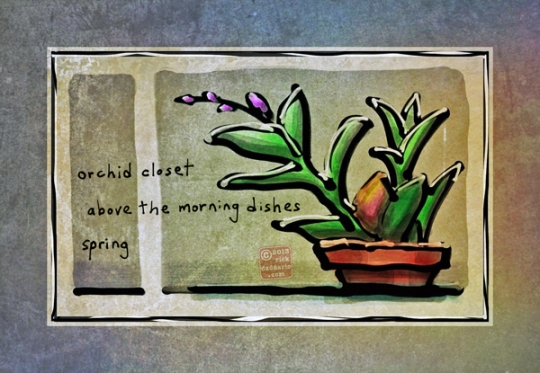 ©13 Orchid Closet 5 sml6x