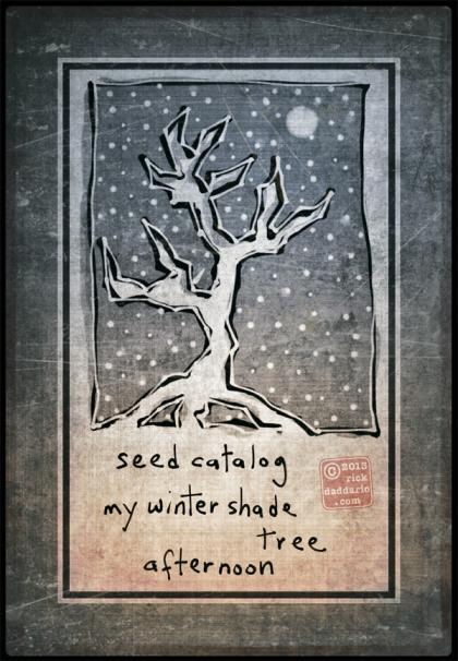 ©13 Winter Shade Tree 4 sml6x