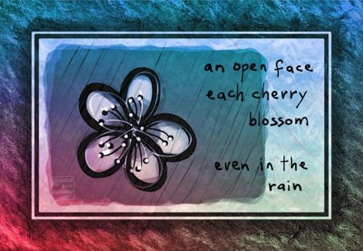 ©13 Cherry Blossom Rain 3 sml6x