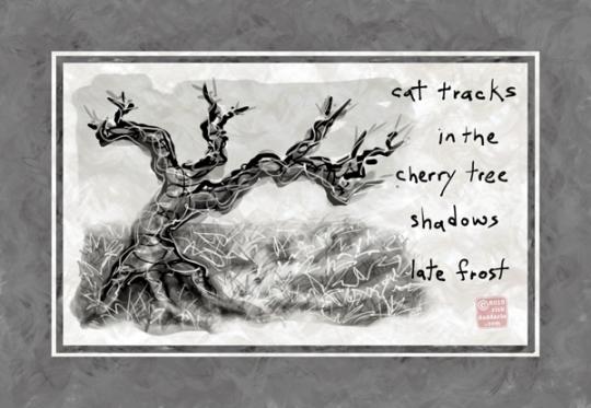©13 Cherry Tree Cat Tracks 7 sml6x