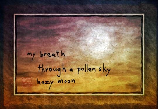 ©13 Pollen Sky 2 sml6x