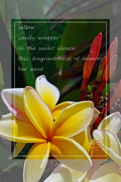 ©13 A Twist of Memory 3 sml6x