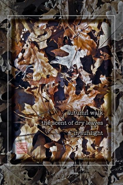 ©13 Scrub Oak Leaves 4 sml6x