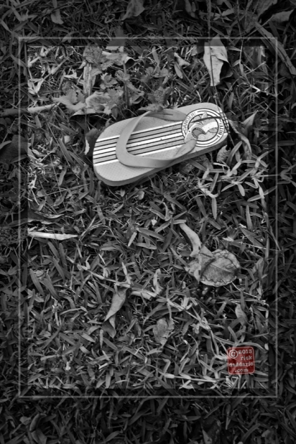 ©13 Flip-flop Slipper 1 sml6x