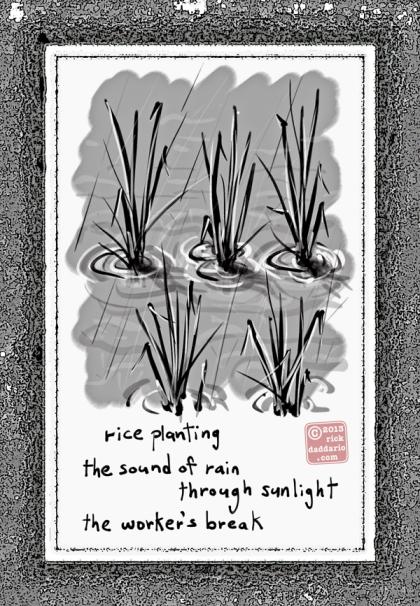 ©13 Rice Rain 3 sml6x