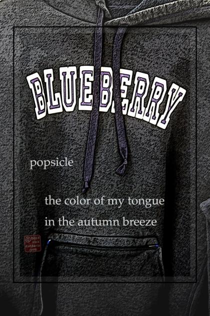 ©13 Blueberry 2 sml 6x
