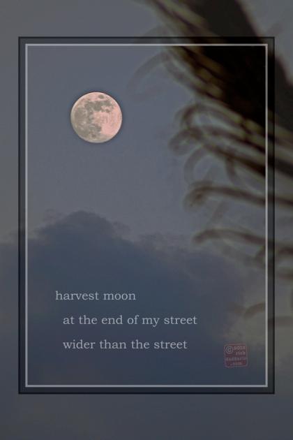 ©13 Harvest Moonrise 3 sml 6x
