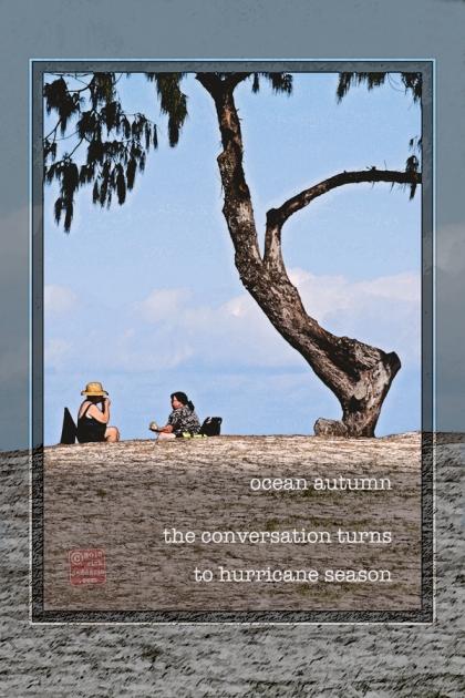 ©13 Hurricane Conversation 2 sml 6x