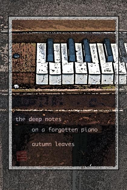 ©13 Piano Keys 4 sml 6x