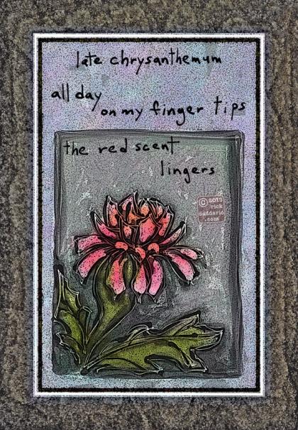 ©13 Red Scent Chrysanthemum 5 sml 6x
