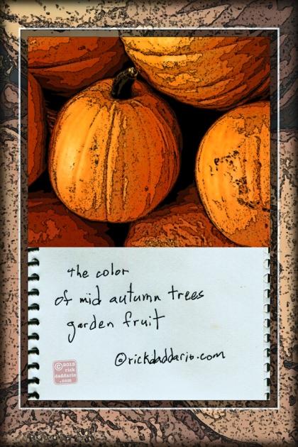 ©13 Autumn Color 1 sml 6x