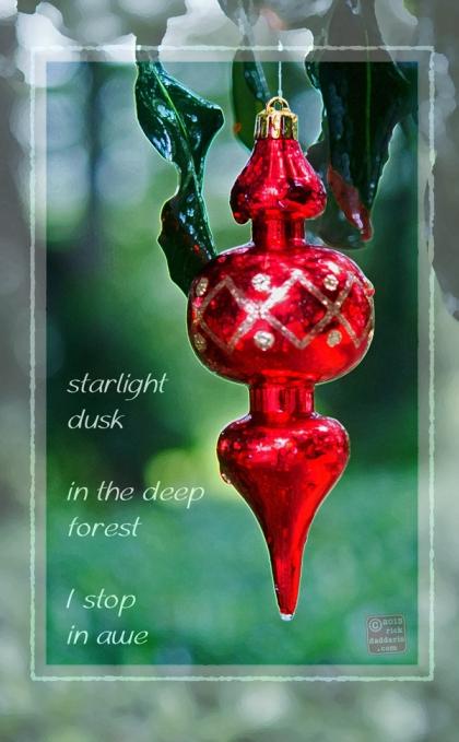 ©13 Starlight Dusk 1 sml 6x