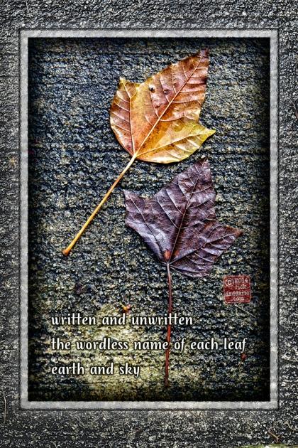 ©14 Each Leaf 3 sml 6x