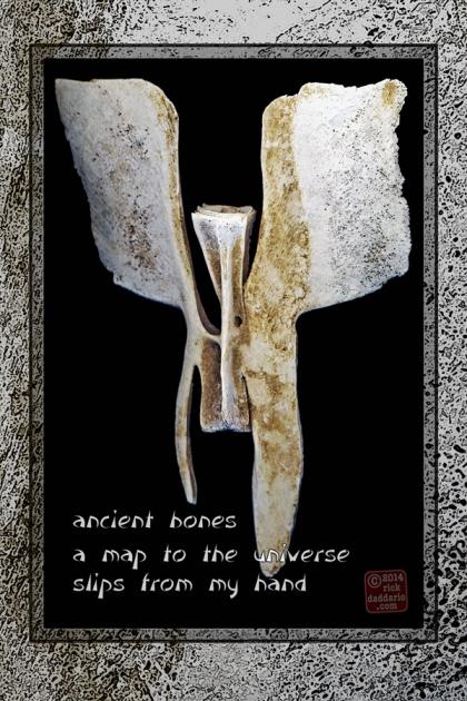 ©14 Ancient Bones 2 sml 6x