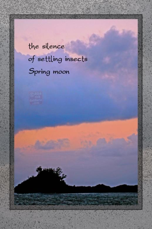 ©14 Silence 3 sml 6x