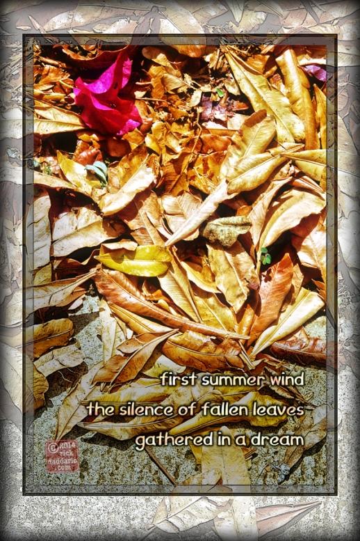 ©14 Fallen Leaves 2 sml 6x