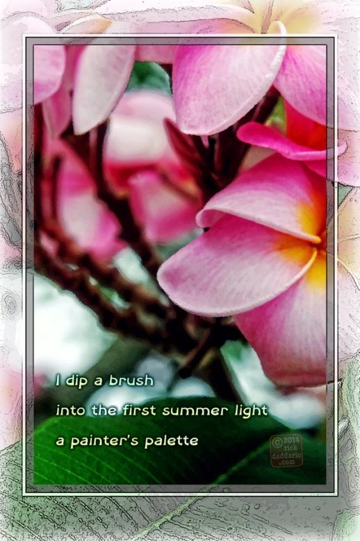 ©14 Summer Light 2 sml 6x