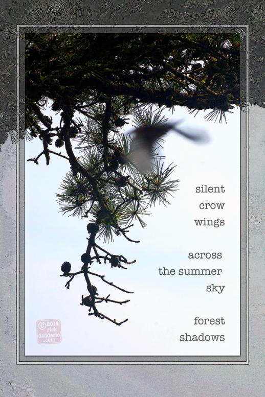 ©14 Crow Flight Encounter 3 sml 6x