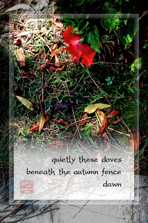 ©14 Autumn Fence Dawn 1 sml 6x