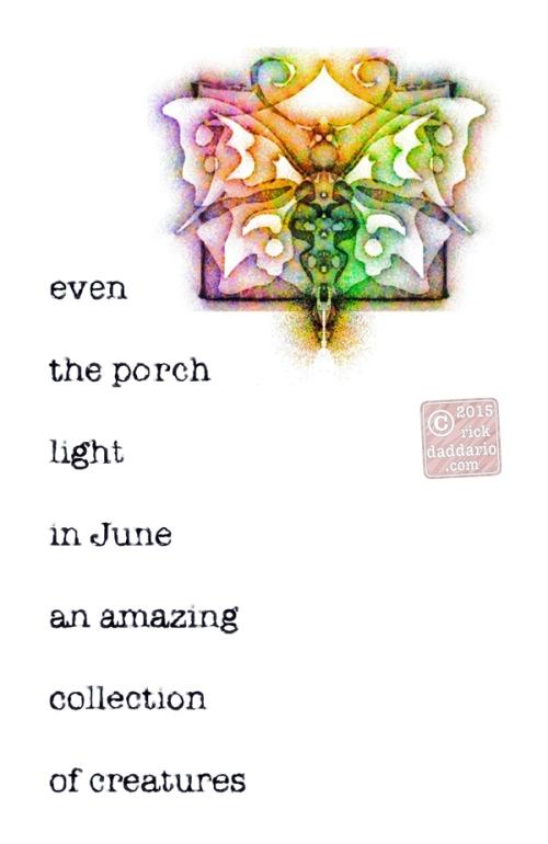 ©2015 Porch Light in June 1 sml 6x