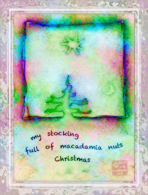 ©2015 macadamia nuts 1 sml 6x