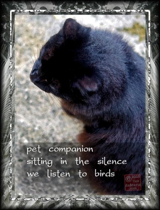 ©2015 pet companion 1 sml 6x
