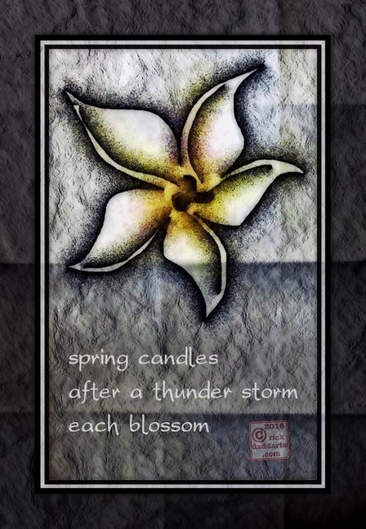 ©2016 fallen blossoms 3 sml 6x
