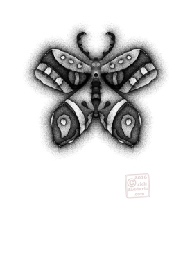 ©2016 butterfly infinity sml 6x