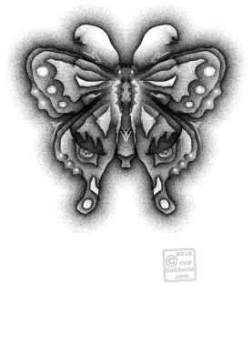 ©2016 butterfly rain 1 sml 6x