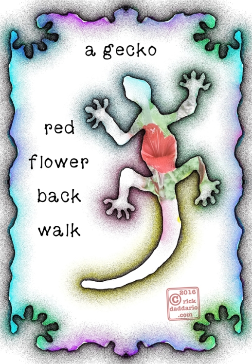©2016 red flower back walk 1 sml 6x