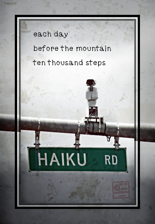 ©2016 haiku mountain road 1 sml 6x