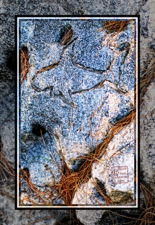 ©2016 petroglyph sea 1 sml 6x