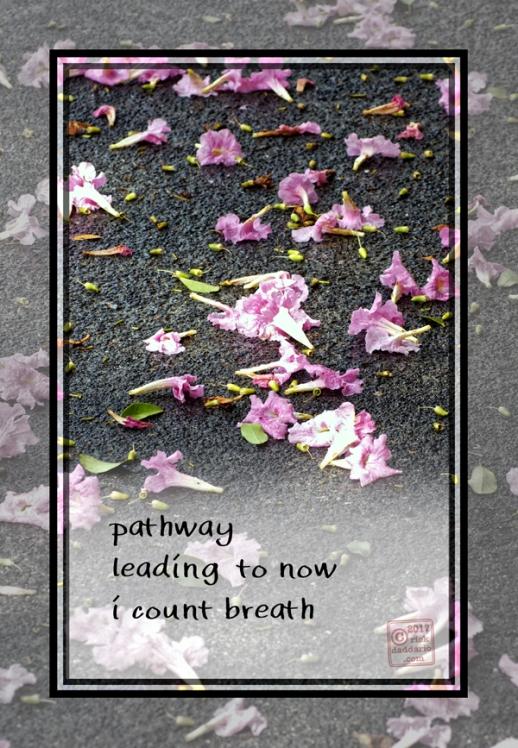 2017-pathway-breath-1-sml-6x