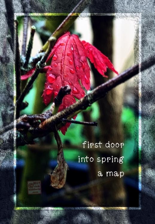 2017-spring-door-1-sml-6x