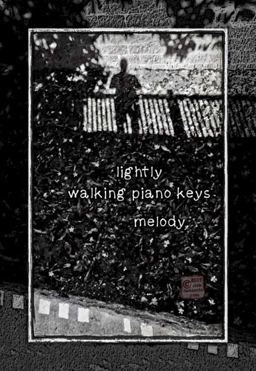 ©2017 shadow music 2 sml 6x