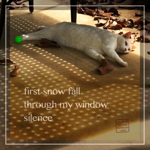 ©2018 window silence 1 sml 6x